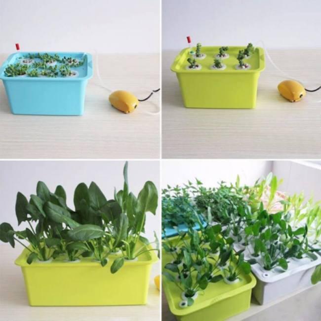1 set 220v/110v plant site hydroponic systems 6 holes nursery pots soilless cultivation plant seedling grow kit