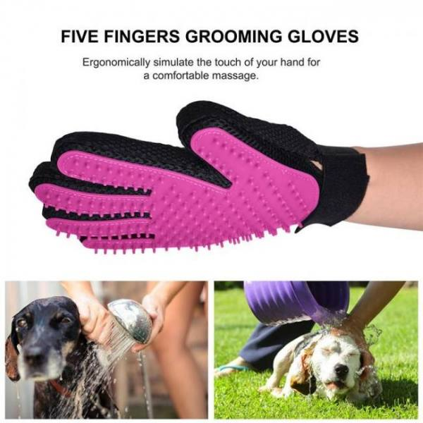 Cat Toys Cat Self Grooming Hair Accessorie With Catnip Angle Face Tickling Hair Removal Massage Brush Comb And Pet Dog Cat Grooming Glove Brush