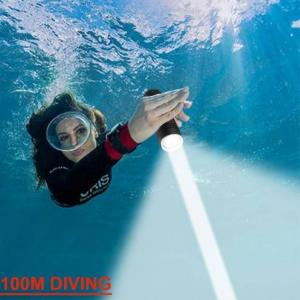 Most powerful professional diving