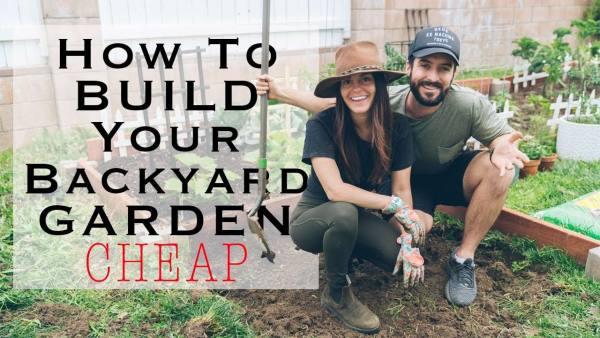 5 cheap diy home garden tips to grow your own vegetables