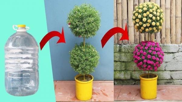 Creative vertical garden from plastic bottles | gardening ideas for home